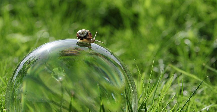 Le pratiche Mindfulness per non perdere la pazienza